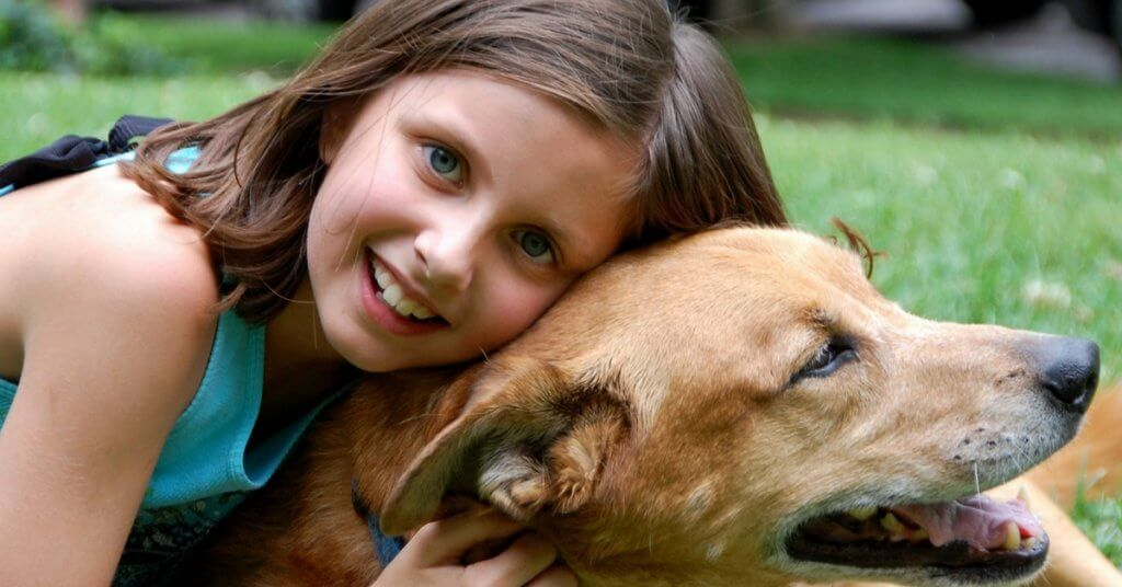 Teaching Kids About Proper Animal Care